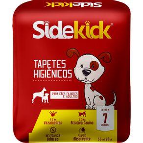 TAPETE-HIG.SIDEKICK-C-7---1593315